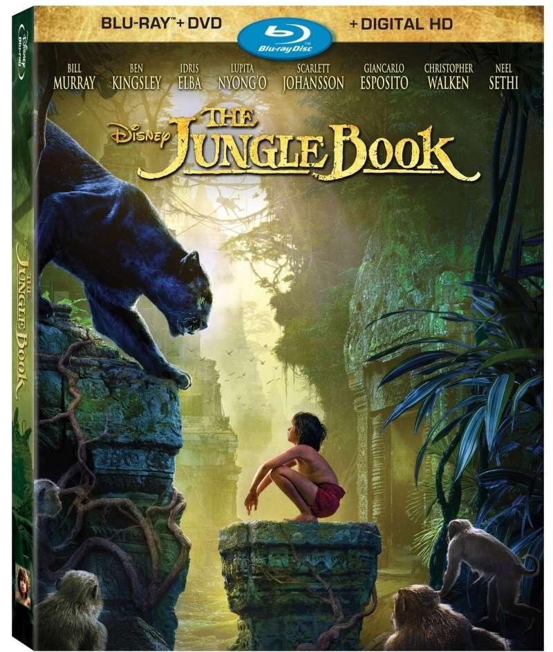 Les jaquettes DVD et Blu-ray des futurs Disney - Page 16 Thejun10