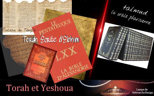 Attention aux faux docteurs - Talmud ou Torah Écrite  Torah_10