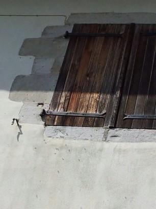Récupération d'un essaim entre volets et fenêtre  13724323