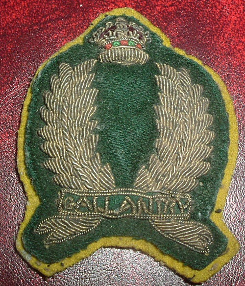A Few Canadian Heros.....   The South African Constabulary Sac_ga25