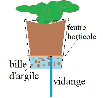 Décor de fond maison et plantes Sans_t10