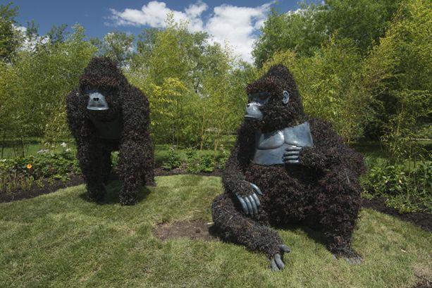 sculture viventi al giardino botanico di montreal Ougand10