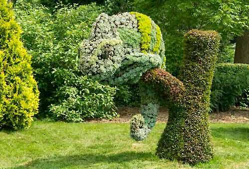 sculture viventi al giardino botanico di montreal Yemen-10