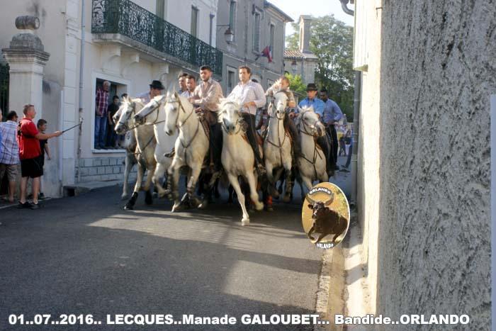 ..01..07..2016..Lecques  Manade Galoubet  Bandide &  Enciero _mg_0030