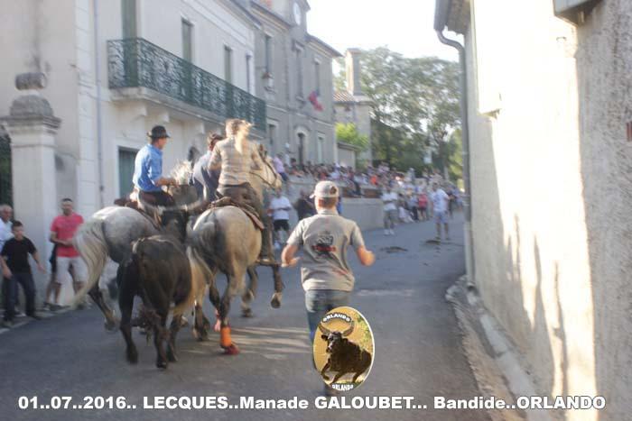..01..07..2016..Lecques  Manade Galoubet  Bandide &  Enciero _mg_0031