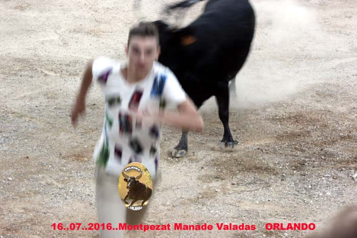 16..07..2016...Montpezat  Manade  Valadas _mg_0040