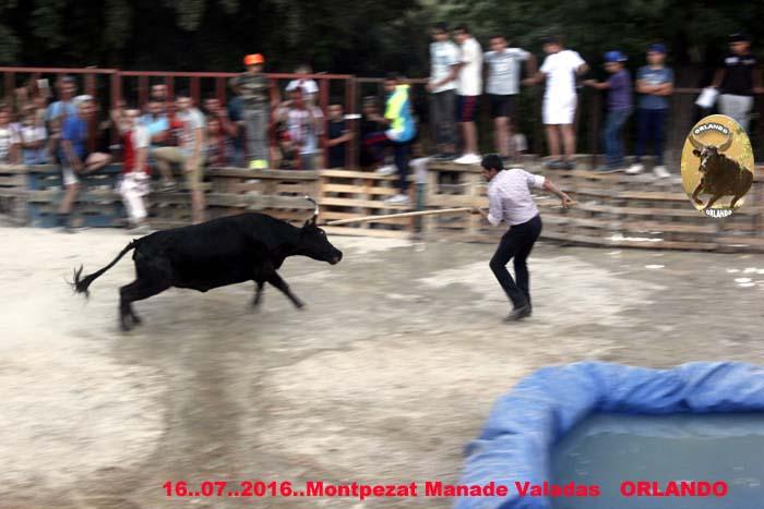 16..07..2016...Montpezat  Manade  Valadas _mg_0041