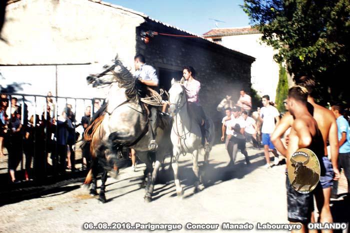 06..08..2016   Parignargue  Concoue & Enciero _mg_0058