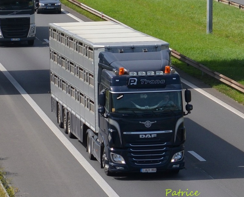 PR Trans (Poperinge) 214