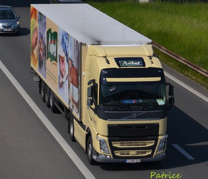 D Trans Logistics  (Aubel) 23711