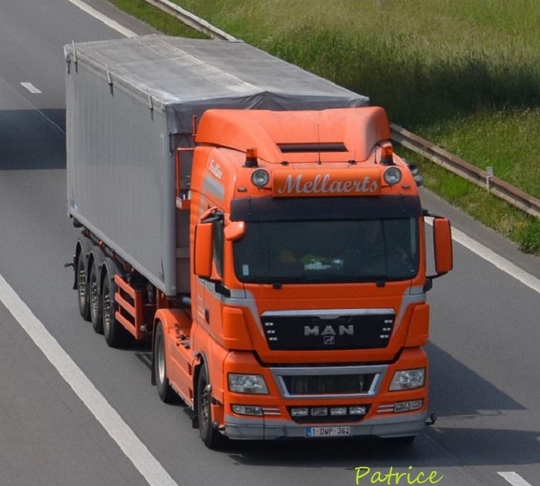 Mellaerts  (Leuven) 3212