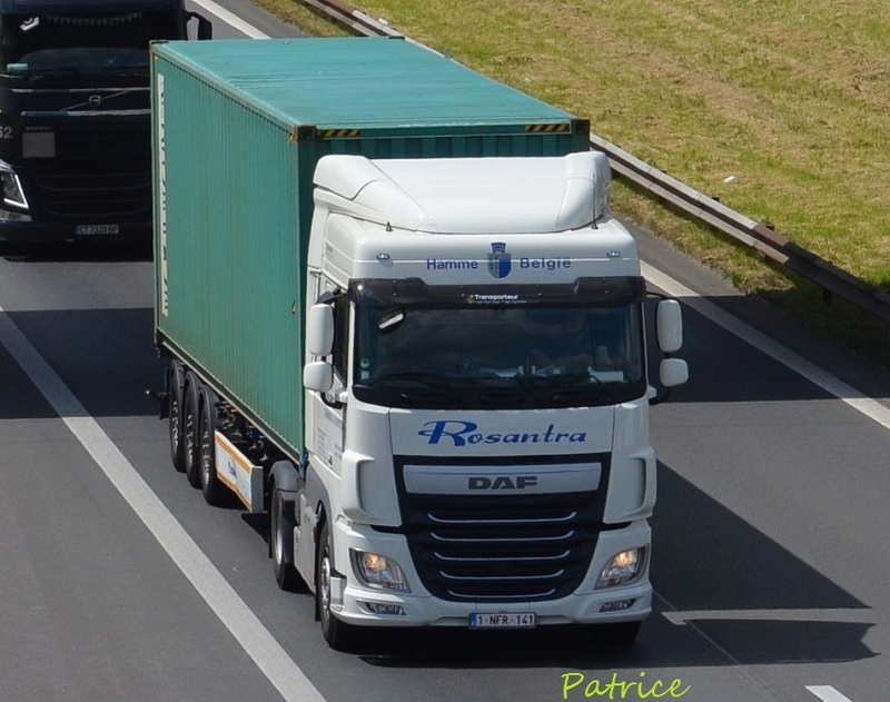 Rosantra (Hamme) 4111