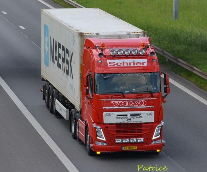 Schrier (Rilland) 8610