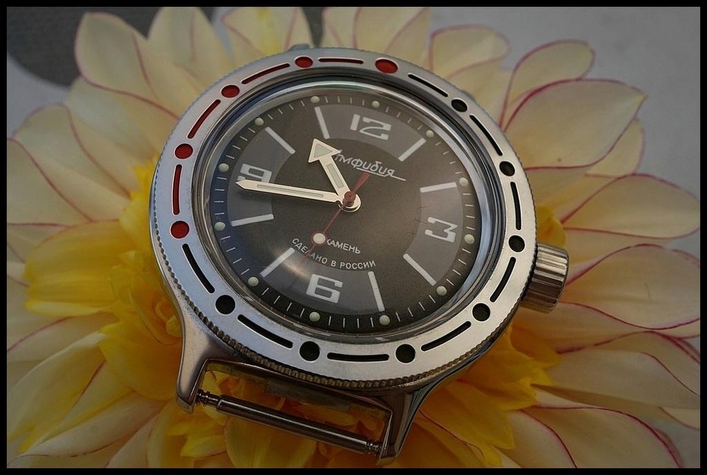 Votre montre du jour - Page 18 Rtdsc038