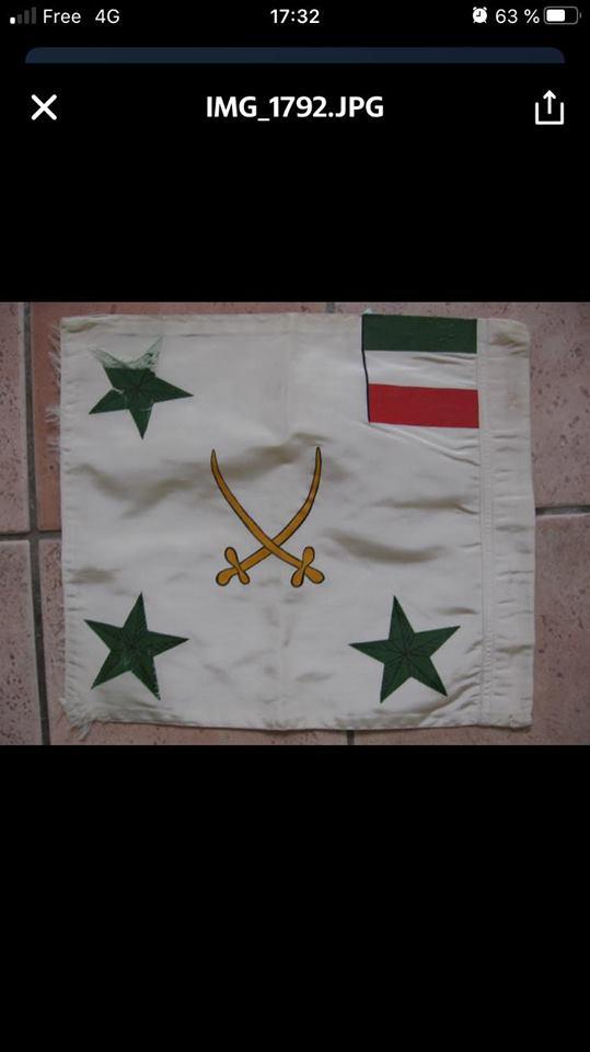 drapeaux 97757010