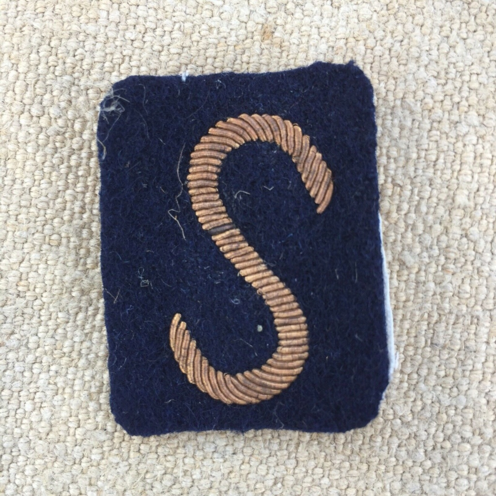 insignes cannetille S-l16010