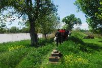 Balade fluviale : journée des 2 îles - île Margaux le 16/08/2016 Ile_ma17