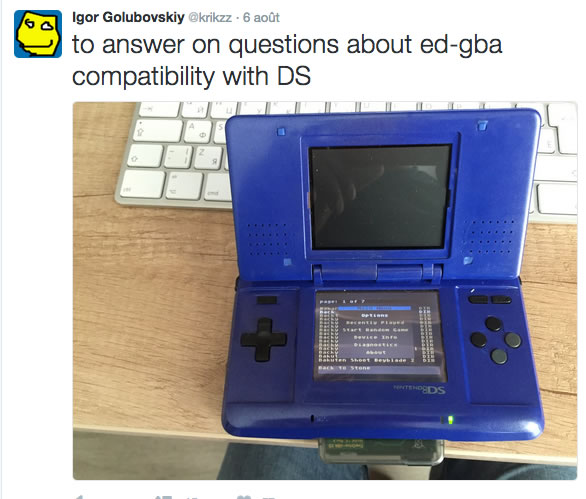 EverDrive GBA X5  (achat groupé) Gbads10