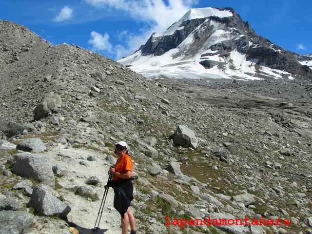 20100802 - ALPES ITALIANOS - GRAN PARADISO (4.061 m.) 03910