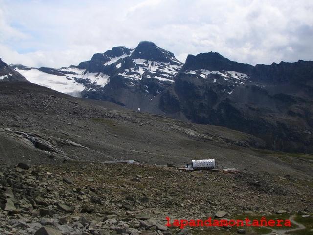 20100802 - ALPES ITALIANOS - GRAN PARADISO (4.061 m.) 06310