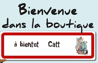 cahier de vacances 2016 de cattt. - Page 13 Bienve10