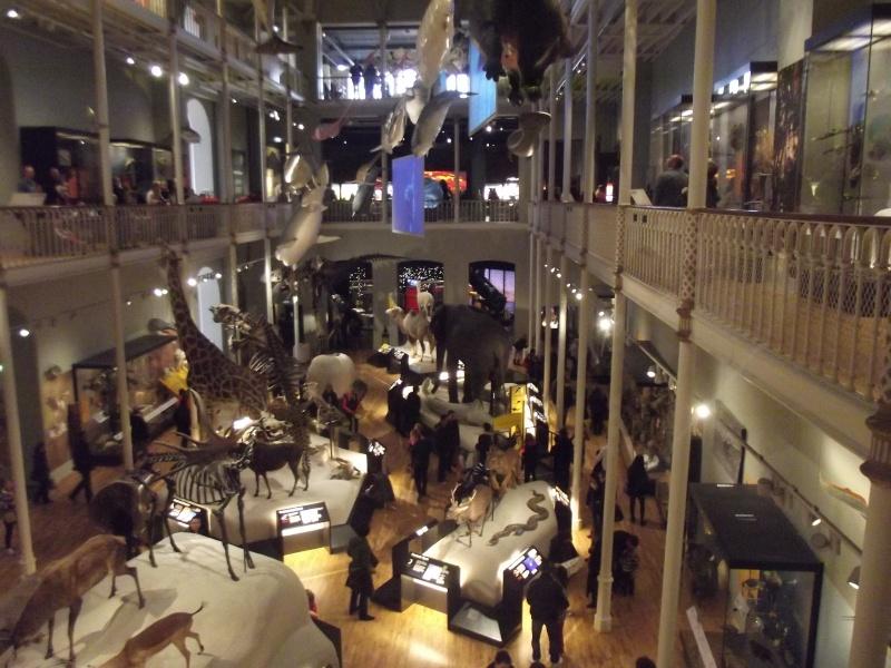Scottish National Museum Dscf1327