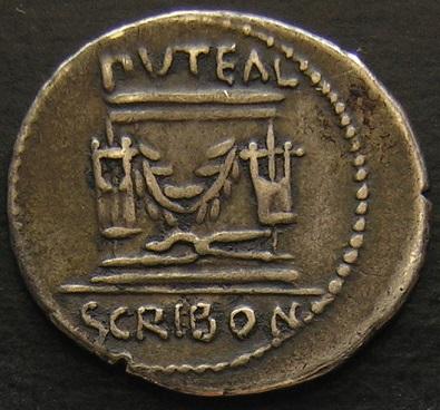 Scribonia Dscn6012