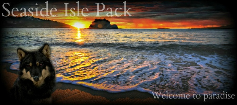 Seaside Isle Pack 010