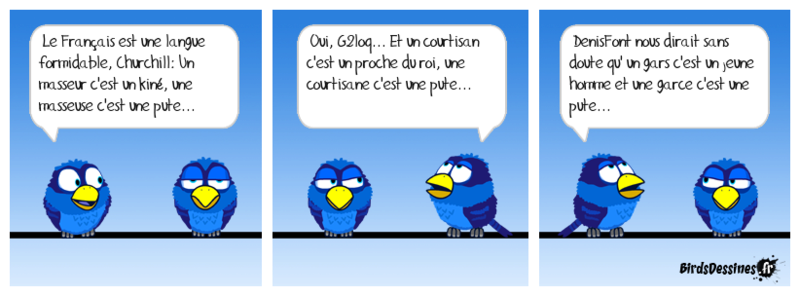 Les Birds et la culture du Forum 14712710