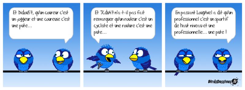 Les Birds et la culture du Forum 14712712
