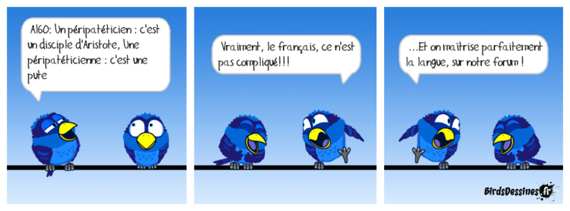 Les Birds et la culture du Forum 14712714