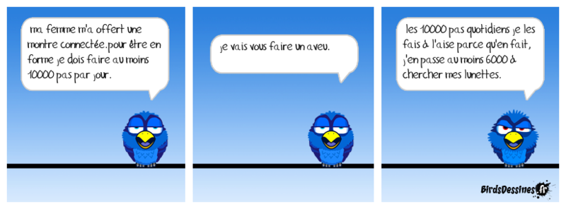 Quelques Birds ? Boudu114