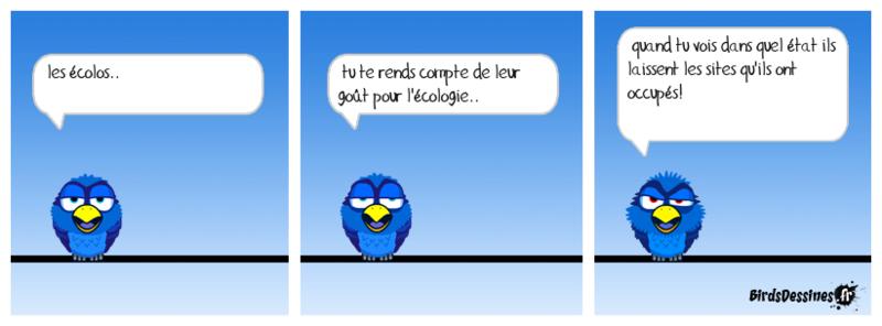 Quelques Birds ? Boudu115