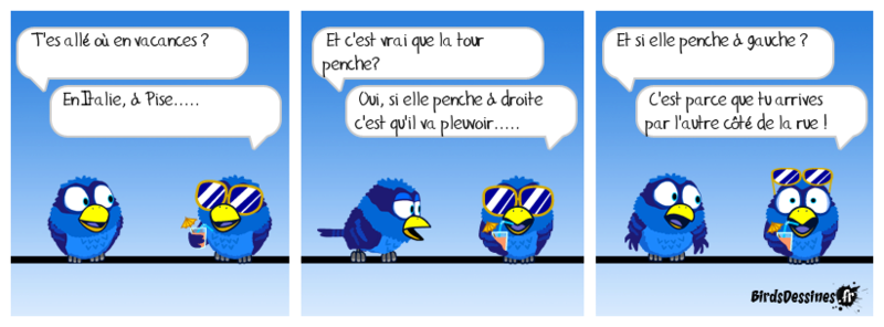 Quelques Birds ? Gavera15