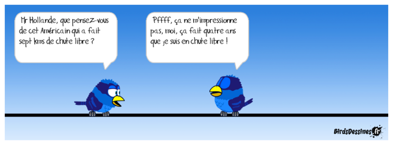 Quelques Birds ? Papyja13