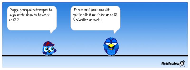Quelques Birds ? Papyja14