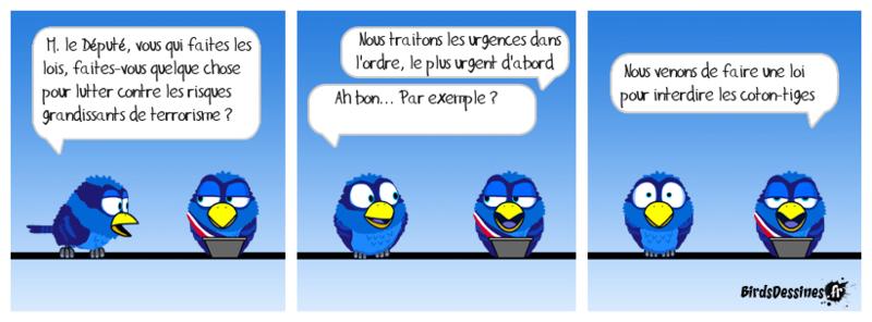Quelques Birds ? Pierre11