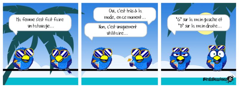 Quelques Birds ? Pierre12
