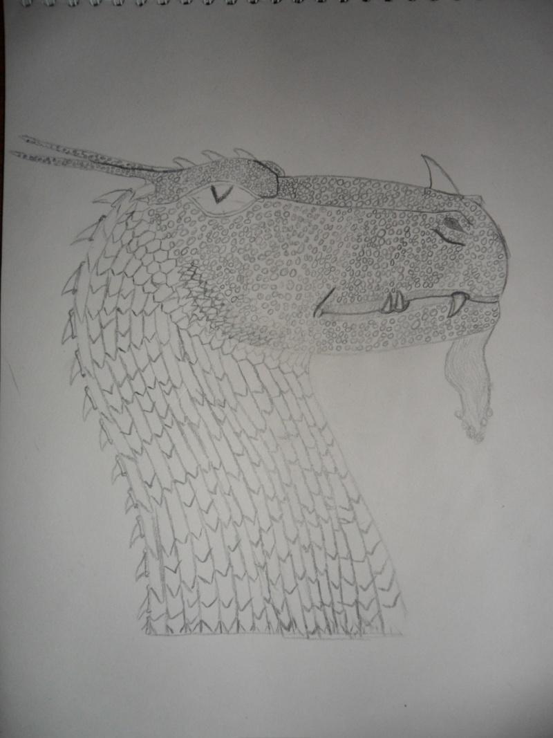 My drawings Sam_1413
