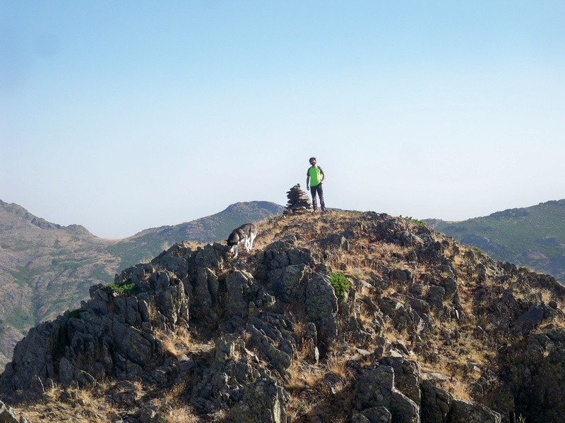 Montañismo: sábado 30 de julio 2016 - Cresta del Dragón y Pico Atalaya (Ayllón) 005_al10