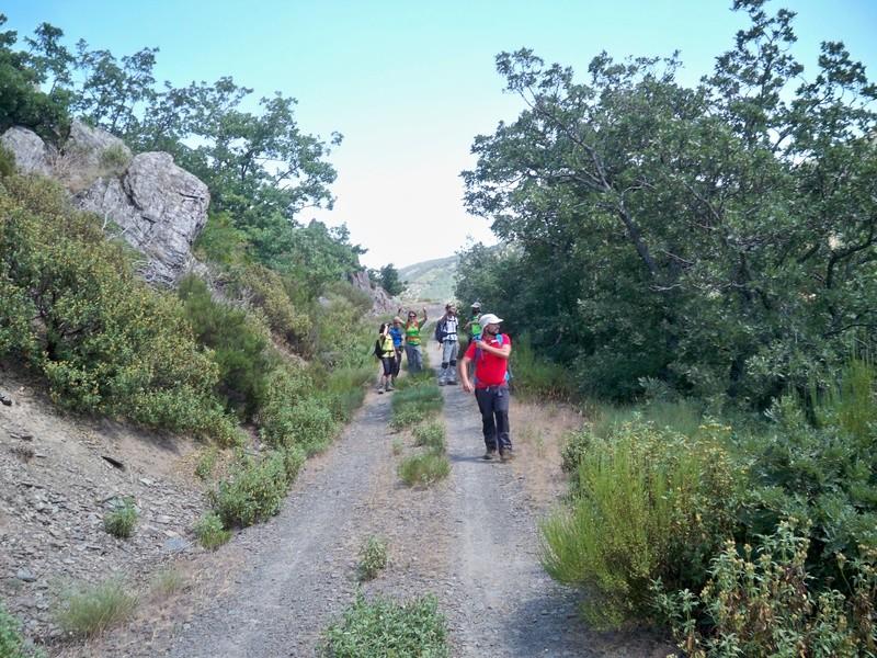 Montañismo: sábado 30 de julio 2016 - Cresta del Dragón y Pico Atalaya (Ayllón) 024_en10