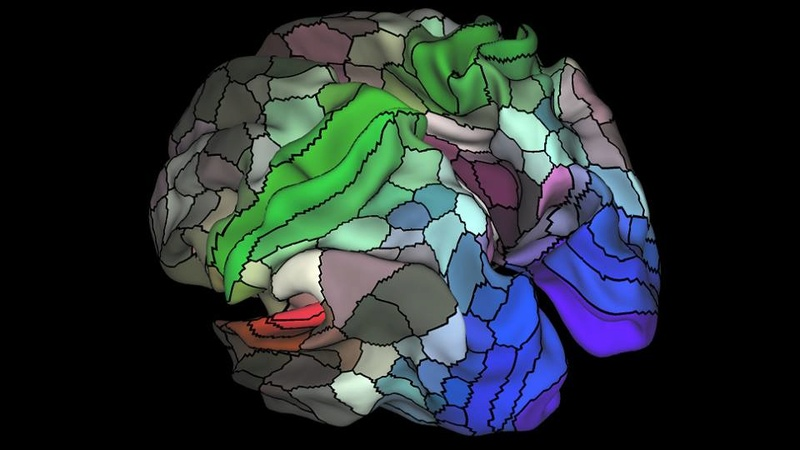 Возможности мозга A16