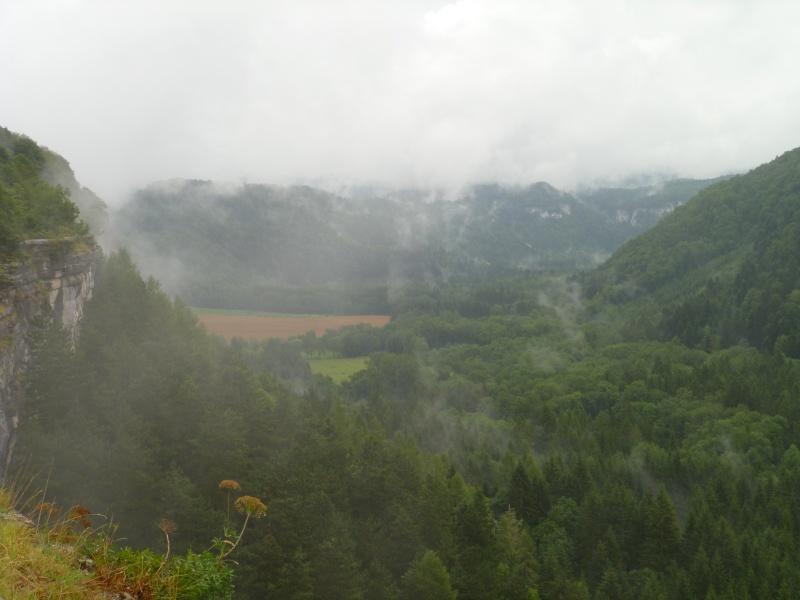 Sortie dans le Jura P1020515