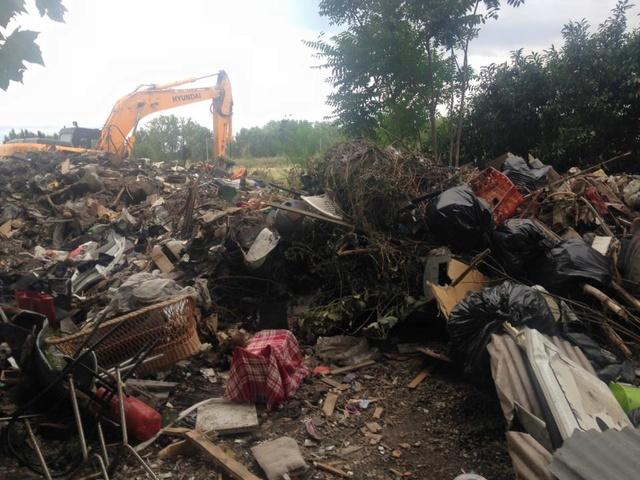 Camp de Roms de Montaudran démantelé : 50 chats sortis de l'enfer 13887110