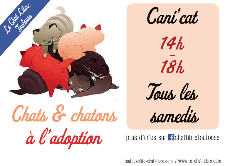 [ Adoptions ] Tous les samedis 14h - 18h chez CANICAT  - Page 3 Canica13