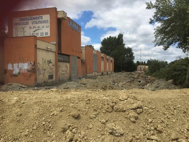 Camp de Roms de Montaudran démantelé : 50 chats sortis de l'enfer Img_9610