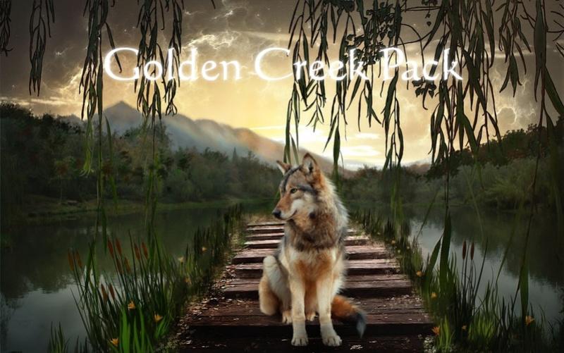 Golden Creek Pack 2ivfdk11