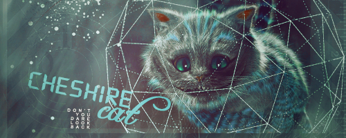 Cheshire Cat Cheshi10