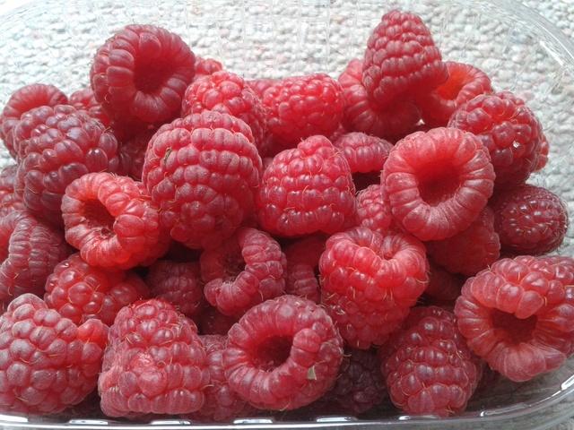 La récolte des fruits 20160715