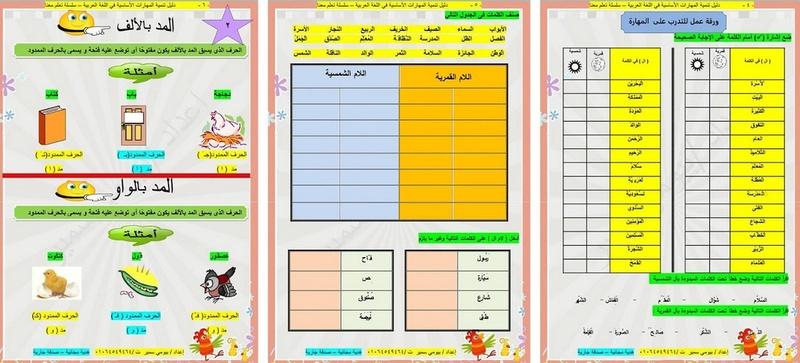 دليل تنمية المهارات الاساسية فى اللغة العربية 2017 21011